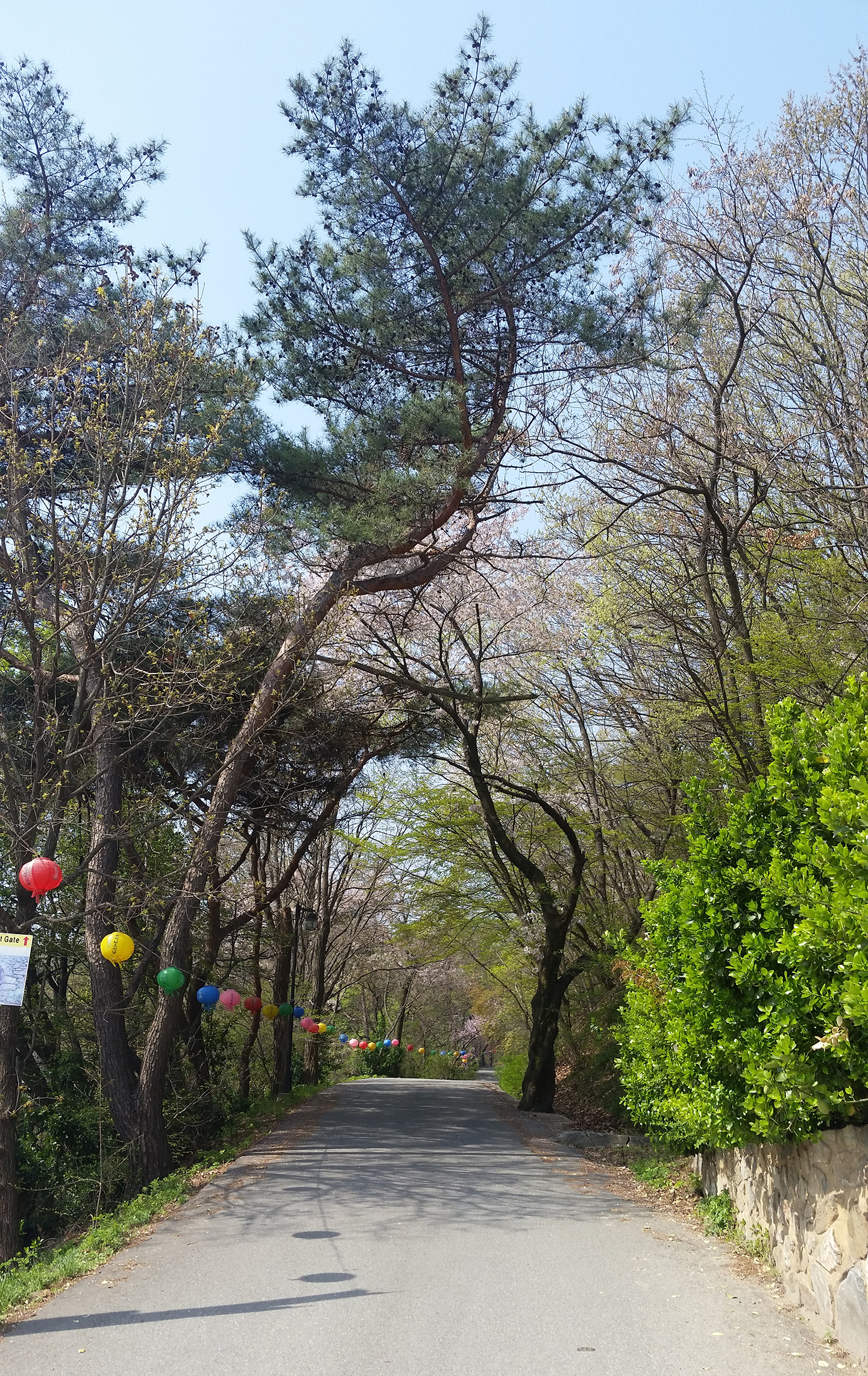 Korea Trip - Jeondeungsa East Entrance Path