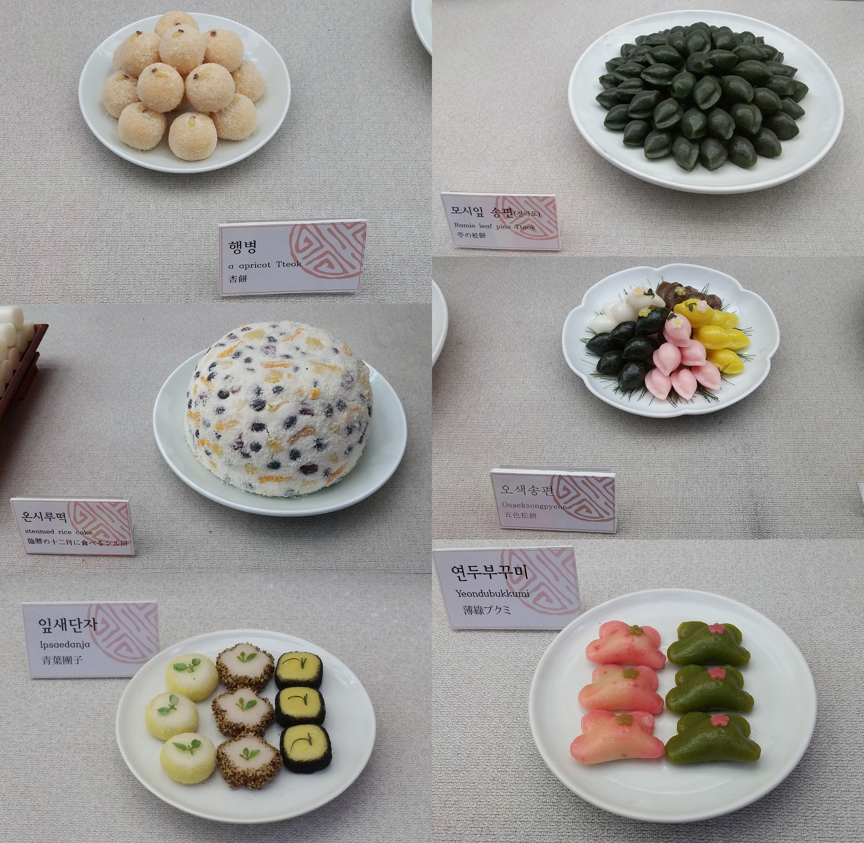 Tteok Museum - Closeup of a Few Rice Cakes
