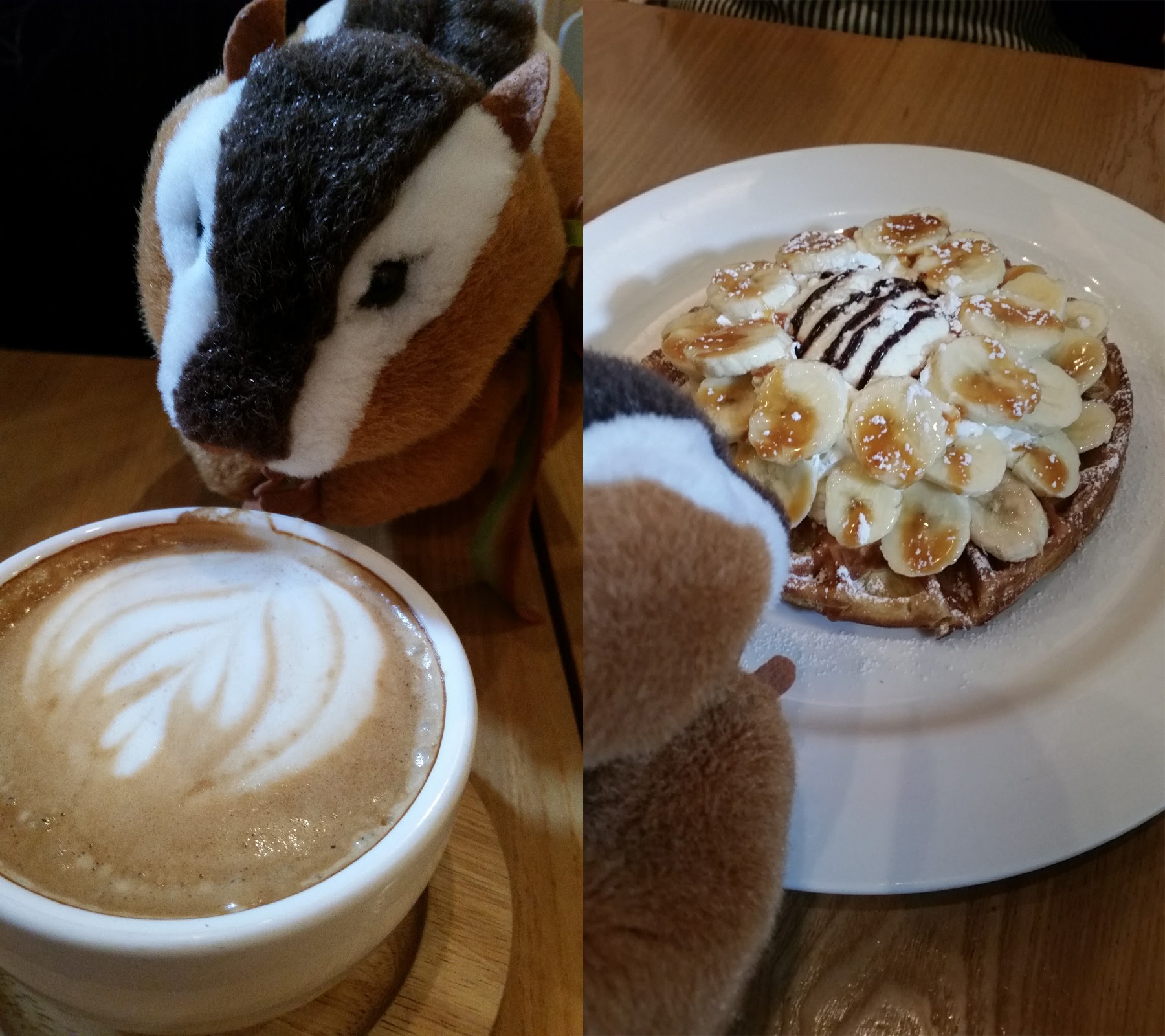 Hongdae - Thanks Nature Latte and Waffle